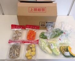 カット野菜宅配のイエコック全体写真