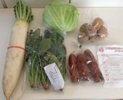 宅配野菜の生活クラブの野菜セット