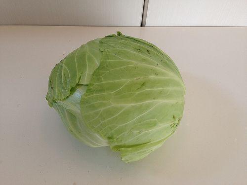 キャベツの野菜宅配