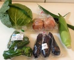 大地を守る会のBBQ野菜セット