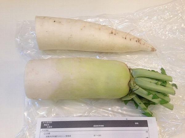 有機野菜だいこん
