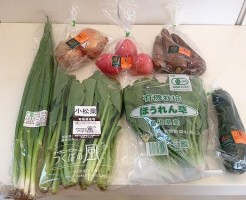 有機JAS認証野菜セット全体図