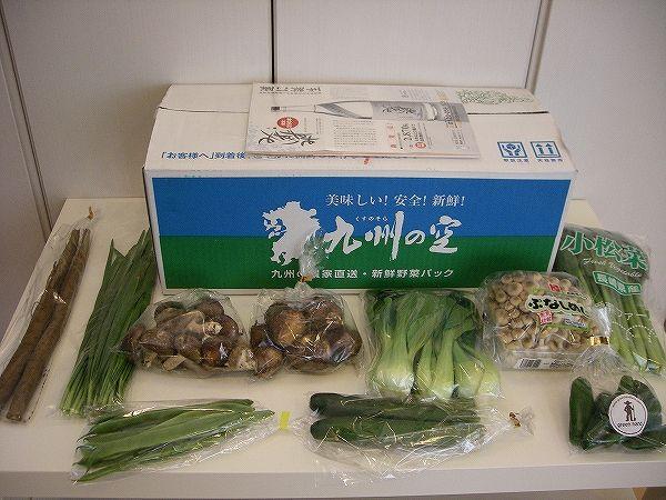九州の空・お試し野菜セット