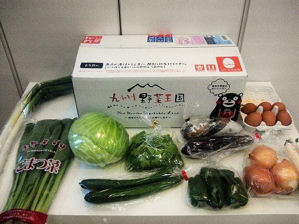九州野菜王国のお試し野菜セット