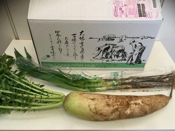 有機栽培の大根と長ネギ