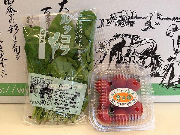 有機栽培のトマトとルッコラ~無農薬野菜のミレー