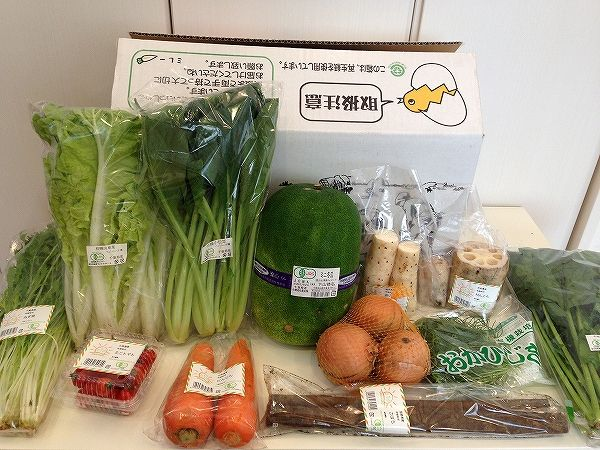 無農薬野菜のミレーの有機おやさいセット全体~野菜宅配まとめ