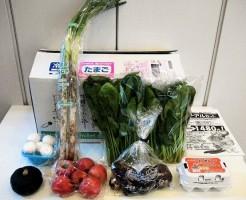 無農薬野菜のミレーお試しセットの野菜一覧