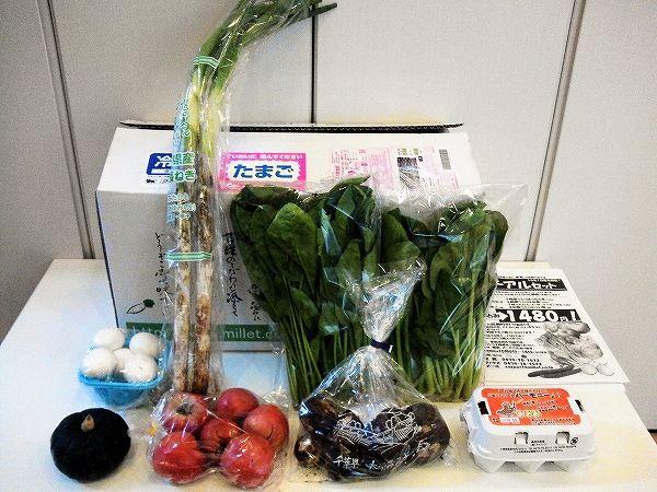 お試しセットの野菜一覧