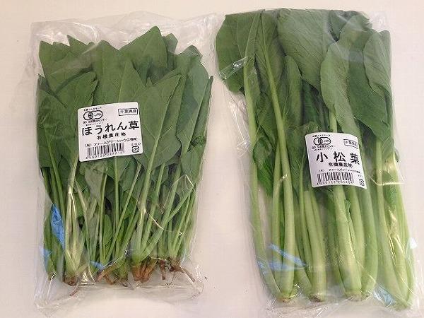 有機栽培ほうれん草と小松菜 | おいしっくすくらぶ1週目