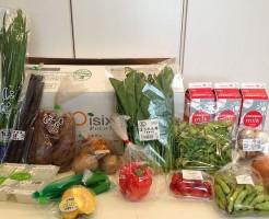 Oisix(おいしっくす)の野菜全体図~野菜宅配まとめ