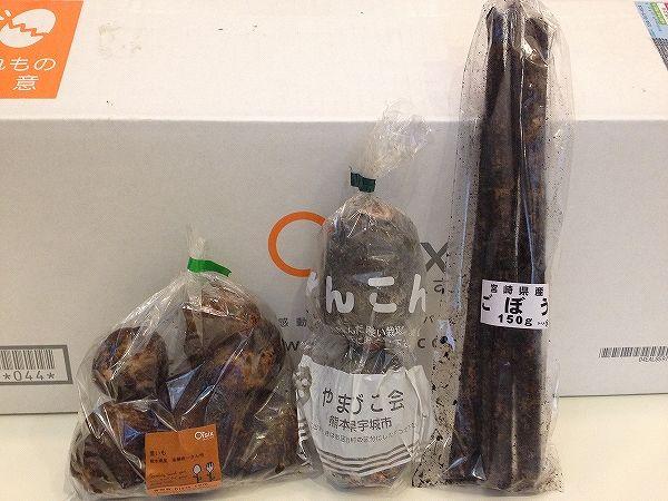 Oisix(オイシックス)九州の根野菜~野菜宅配まとめ