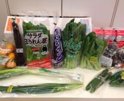 Oisix(オイシックス)九州の野菜全体図