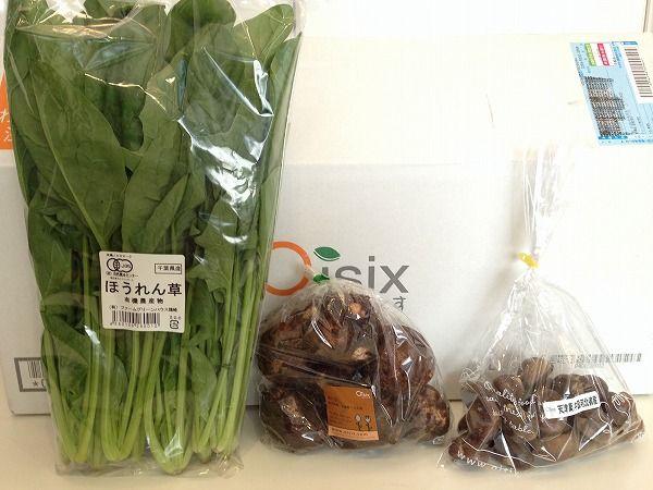 Oisix(おいしっくす)野菜セット~野菜宅配まとめ