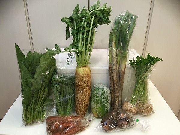 パルシステムの有機野菜セット全体図