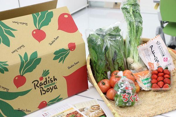 らでぃっしゅの有機・低農薬野菜セット