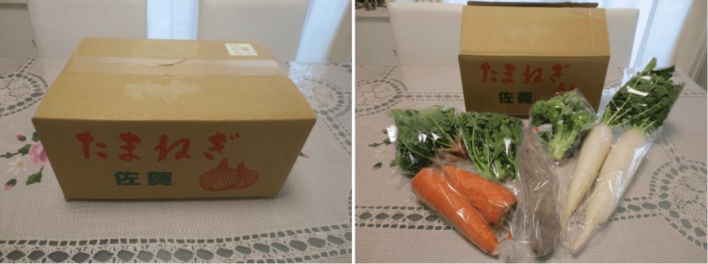 野菜宅配比較ランキング・糸島ベジタリアンベジタブル口コミ