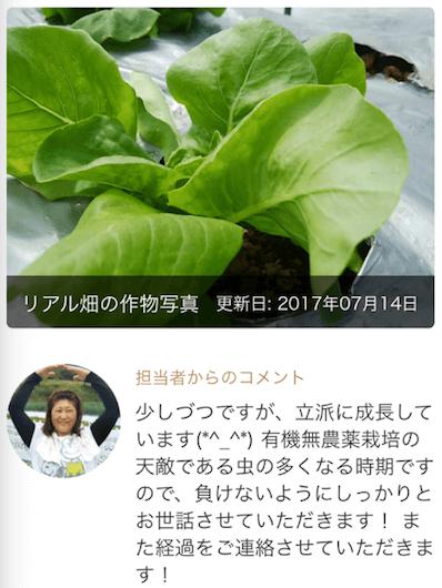 楽天ラグリ・評判89