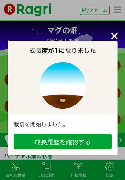 楽天ラグリ・評判38
