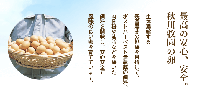 野菜宅配卵ランキング33