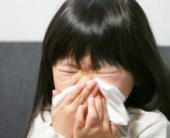 野菜宅配アレルギー対応2
