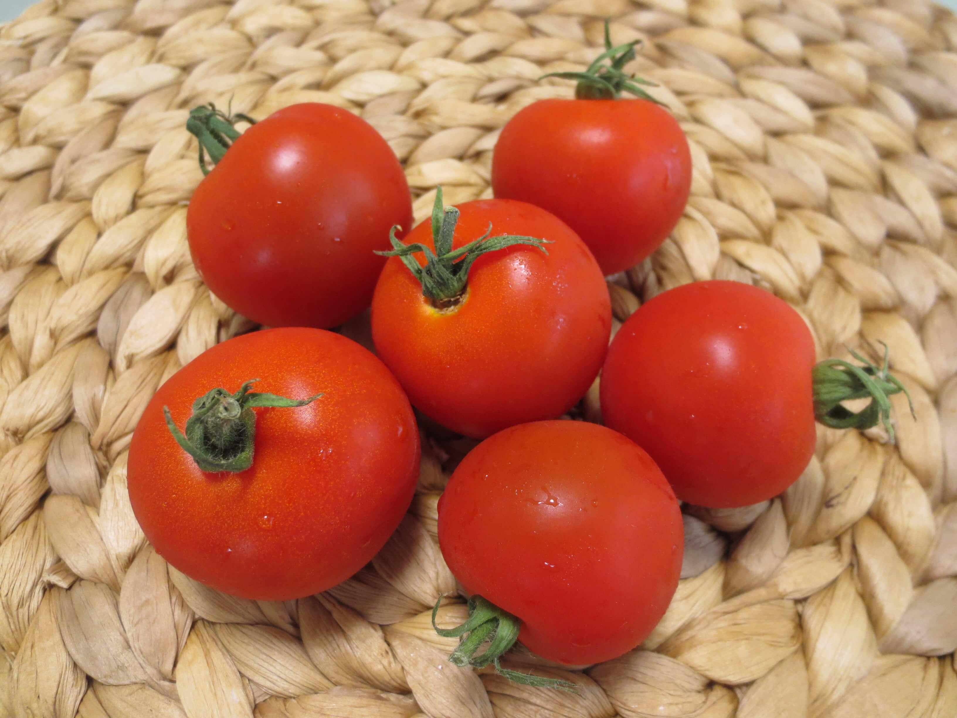 有機野菜、無農薬野菜、減農薬野菜違い9