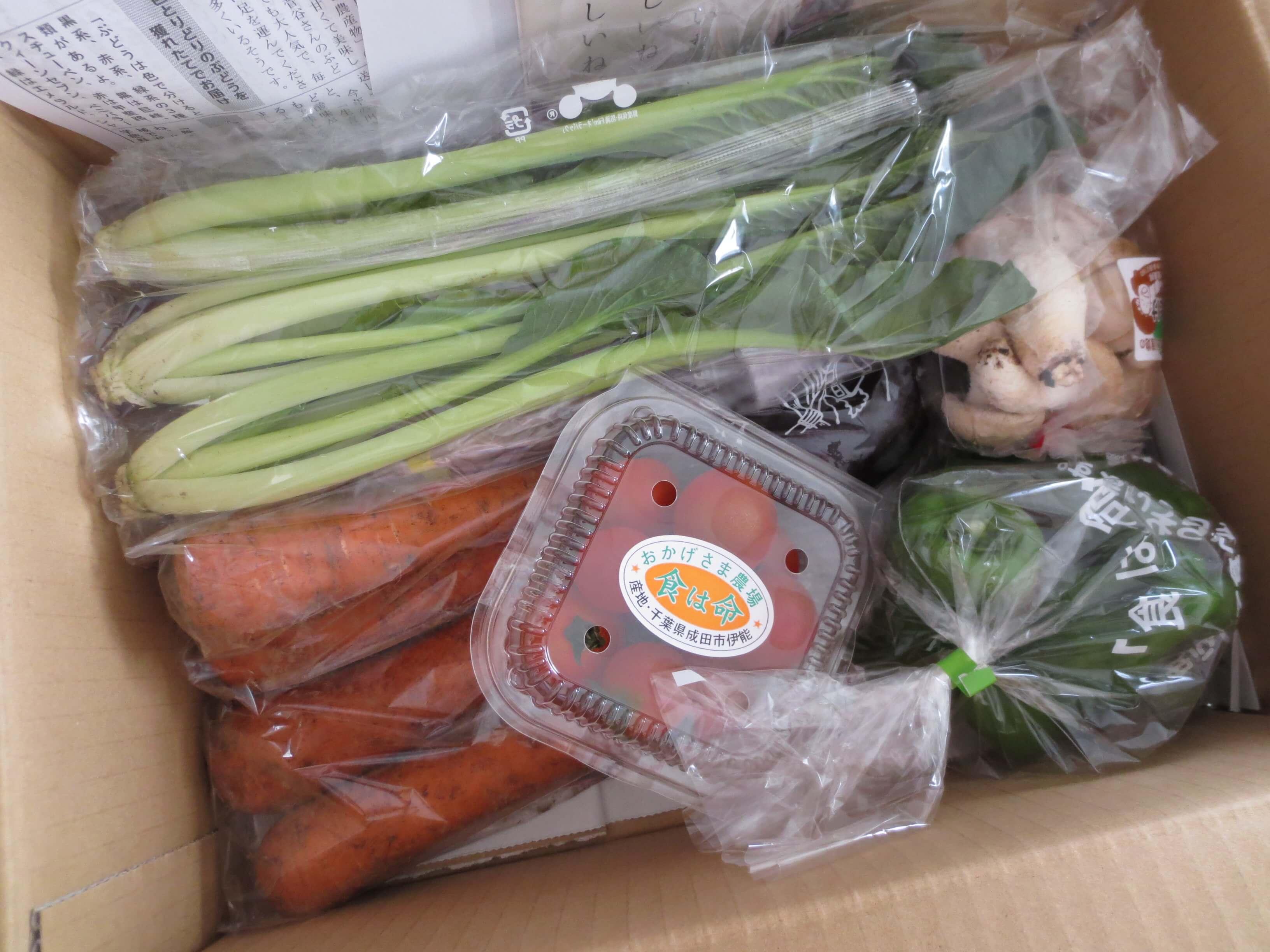 無農薬野菜のミレーお試しセット口コミ3