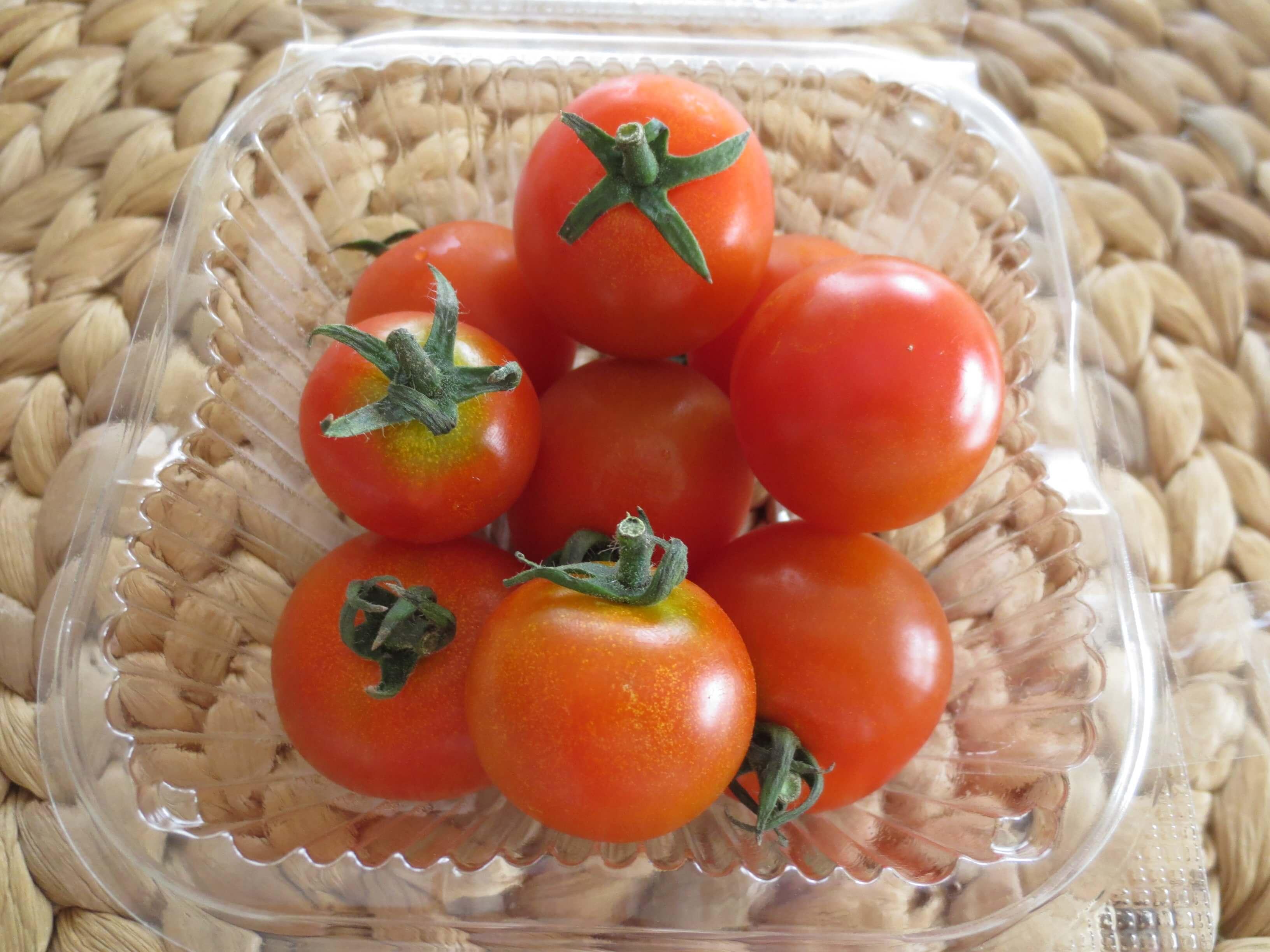 無農薬野菜のミレーお試しセット口コミ5