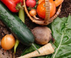 有機野菜、無農薬野菜、減農薬野菜違い5