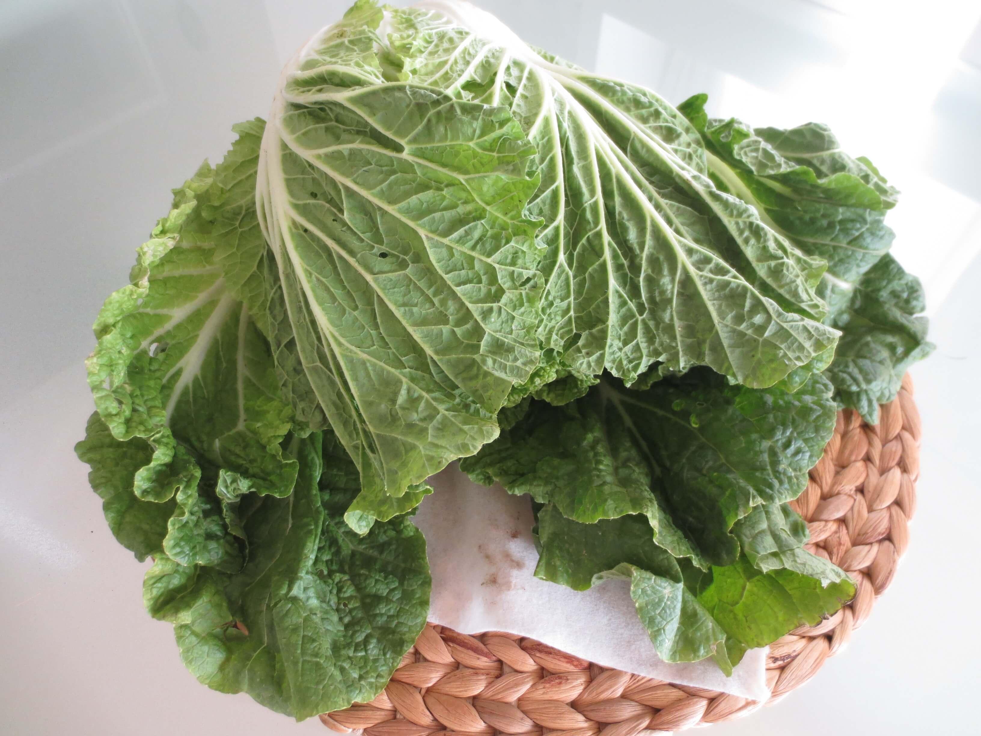 パスシステム有機野菜お試しセット感想14