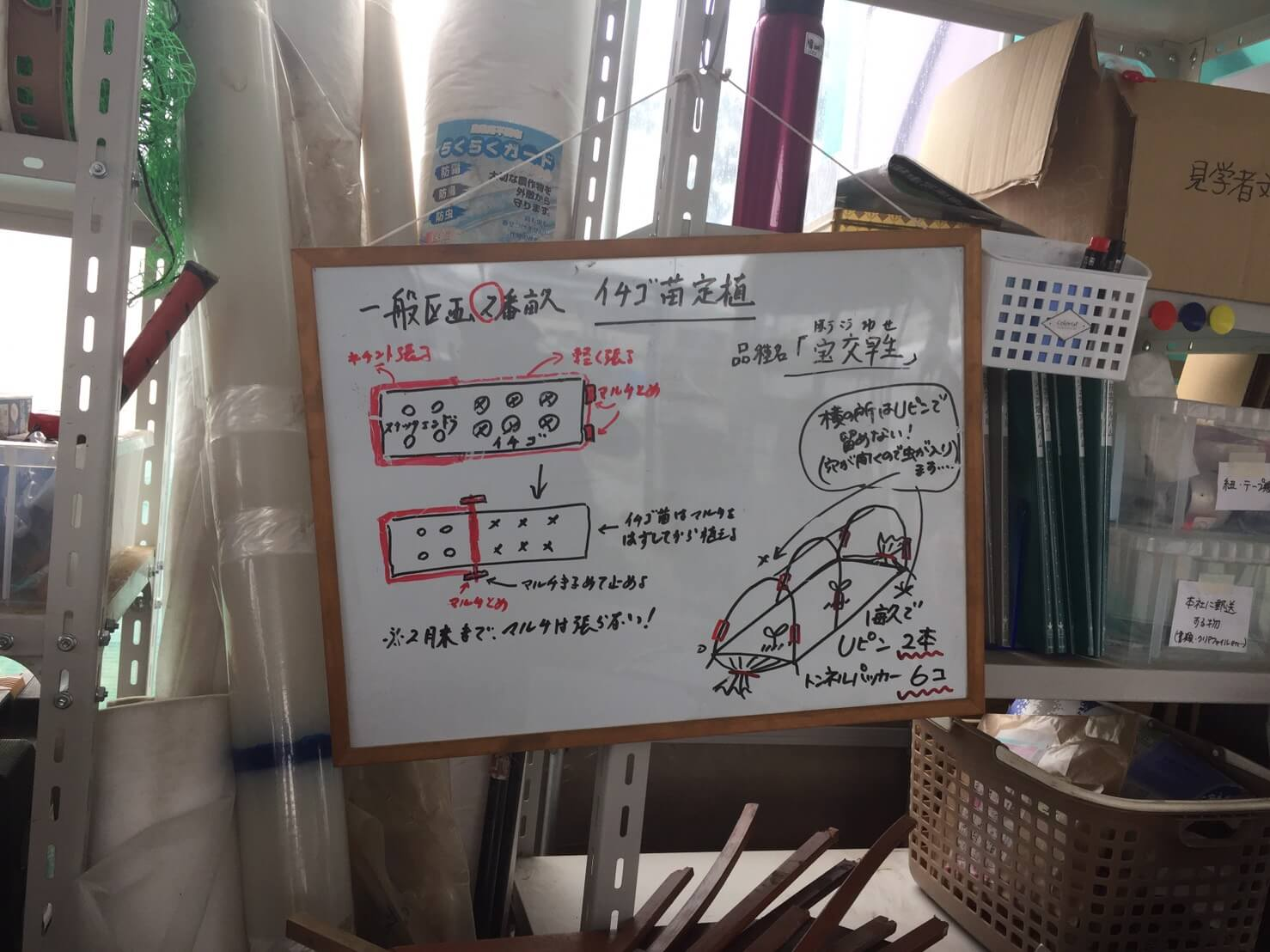 シェア畑見学と入会・口コミ・評判9