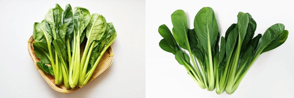 シェア畑の口コミ・有機野菜作り講座23