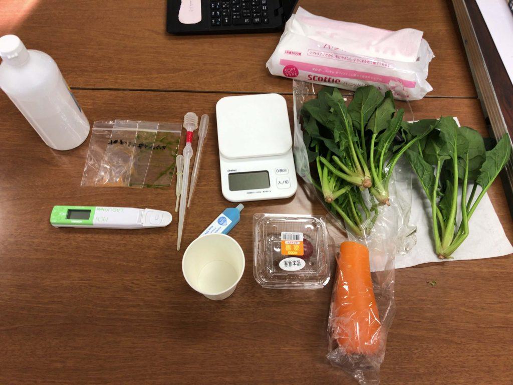 シェア畑の口コミ・有機野菜作り講座12