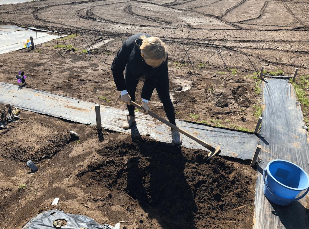 シェア畑・土作り・肥料・ウネの口コミ体験・4