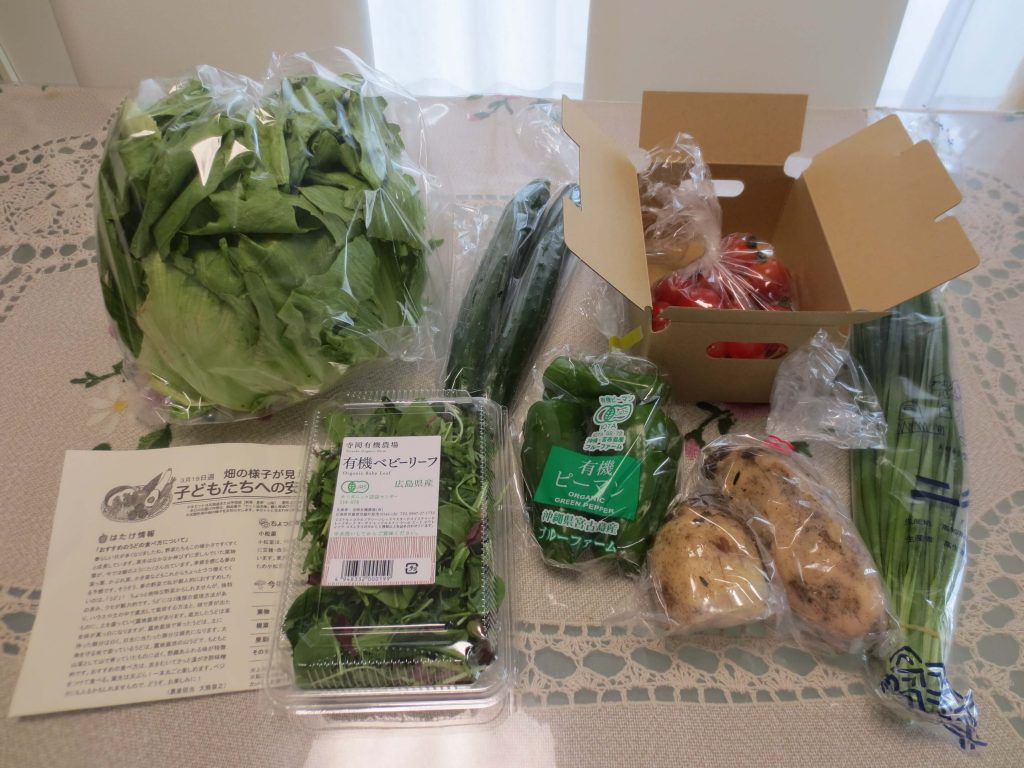大地を守る会・子どもたちへの安心野菜セット・口コミ評判4