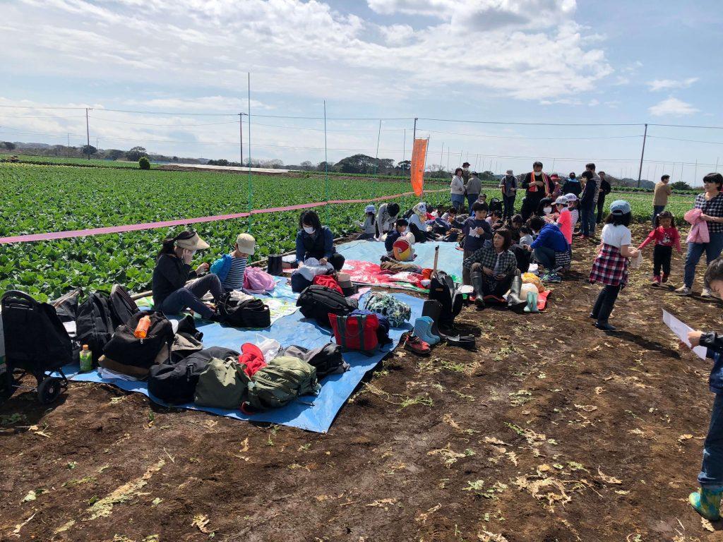 大地を守る会のイベント口コミ体験・大根収穫祭12