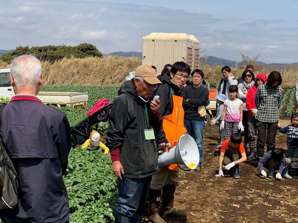 大地を守る会のイベント口コミ体験・大根収穫祭17