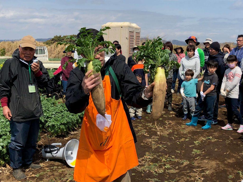 大地を守る会のイベント口コミ体験・大根収穫祭18