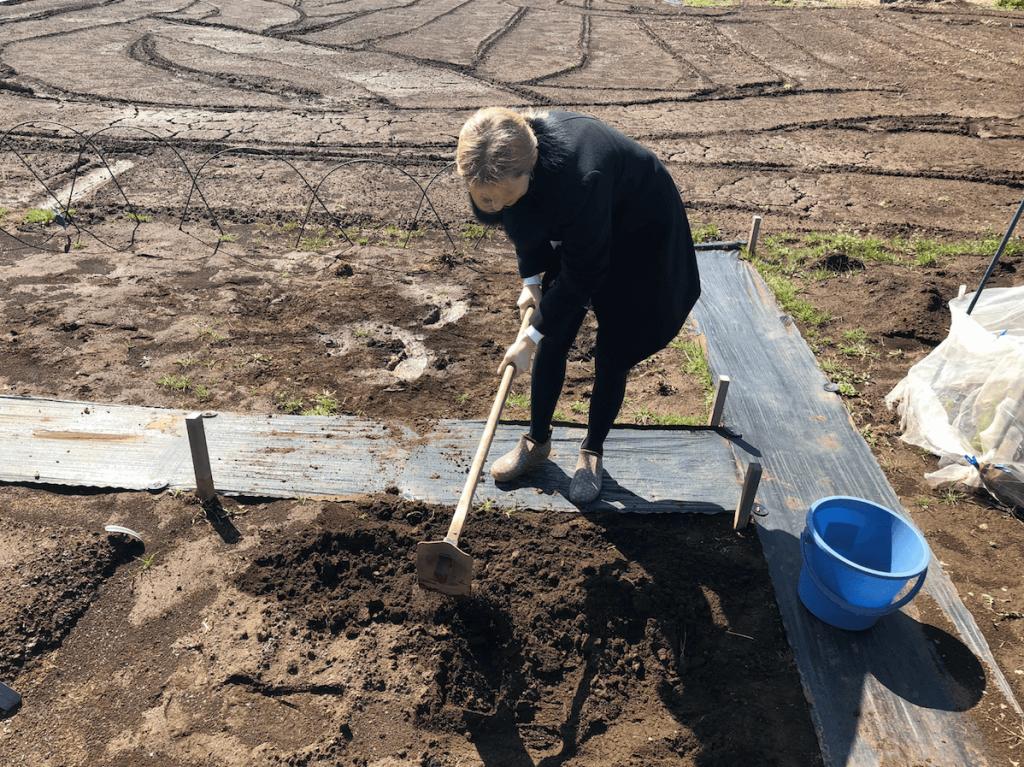 シェア畑・土作り・肥料・ウネの口コミ体験・3
