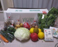 九州の野菜宅配ベジリーの口コミ・評判・メリット・デメリット53