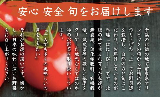 無農薬野菜はにーびーの口コミ・評判・メリット・デメリット29