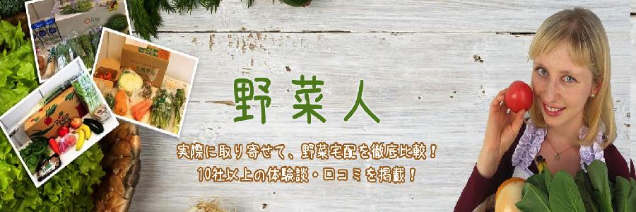 無農薬野菜のミレー【お試しセット】を購入しました | 野菜宅配まとめ