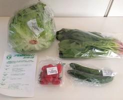 生活クラブで届いた野菜