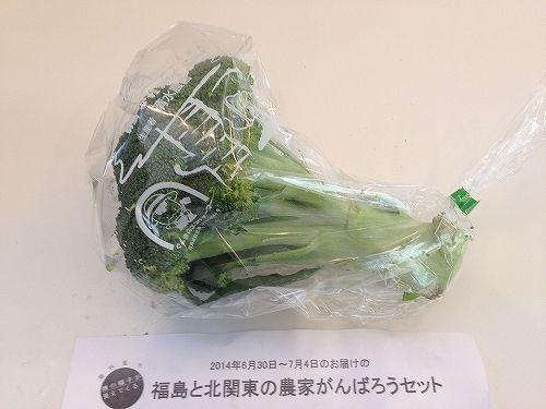 有機野菜ブロッコリー