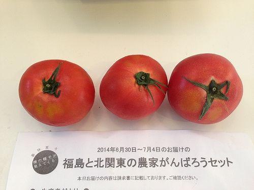 福島県産有機トマト
