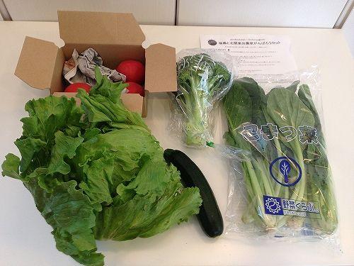 福島県の有機野菜セット