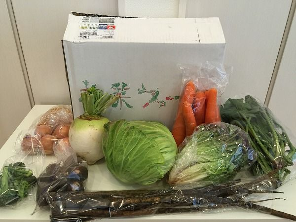花菜(はんな)の初回半額特別モニターで届いた野菜