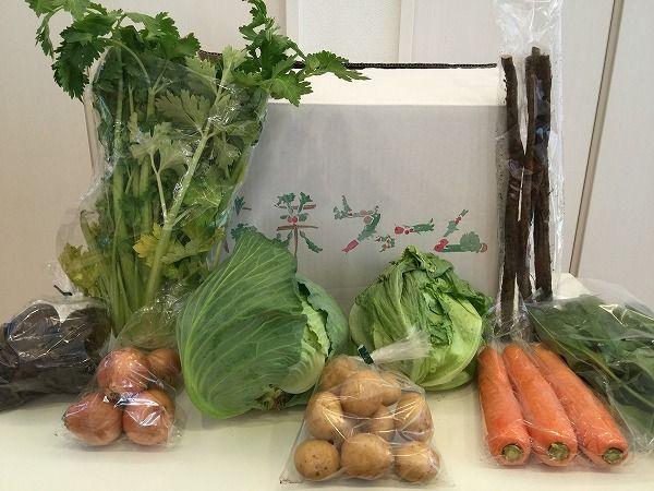 花菜の野菜全体写真