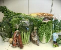 無農薬野菜の宅配写真
