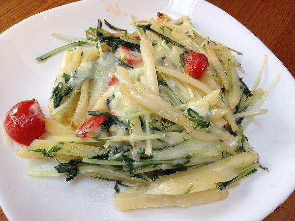 有機栽培の冬瓜と水菜~無農薬野菜のミレー